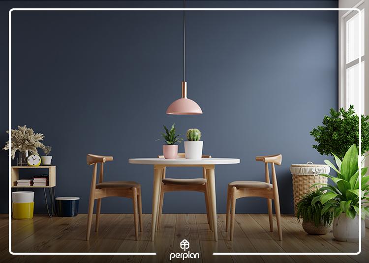 Plantas Indoor I conheça as vantagens que as plantas podem conceder no seu apartamento